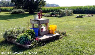 Shallow well and herb garden