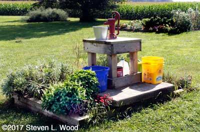 Galvanized bucket under pitcher pump