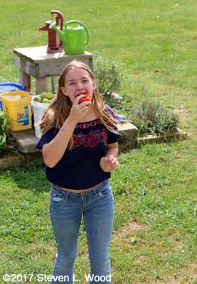 Katherine enjoys an Earlirouge tomato