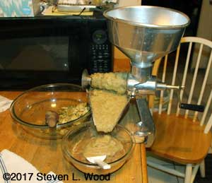 Using Squeezo Strainer to separate applesauce from seeds and peels