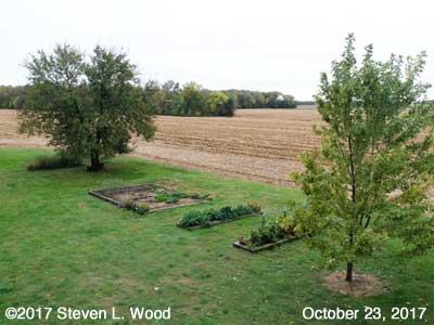 Our Senior Garden - October 23, 2017