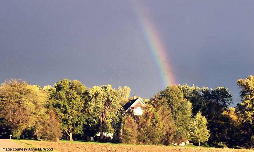 Rainbow over our Senior Garden