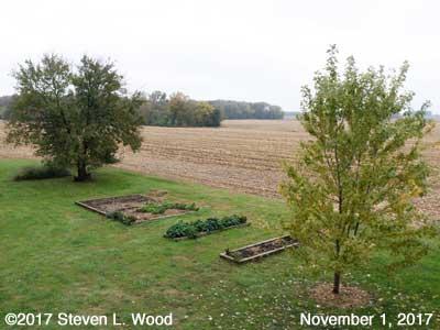 Our Senior Garden - November 1, 2017