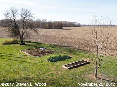 Our Senior Garden - November 20, 2017