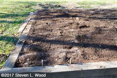 Garlic bed tilled and ready for planting