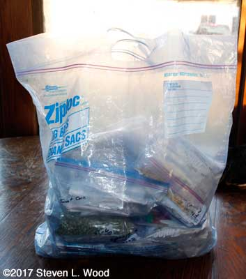 Jumbo Ziplock bag holding lots more Ziplocks filled with garden seed