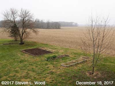 Our Senior Garden - December 18, 2017