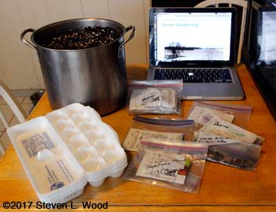 Soil, seeds, and egg cartons ready