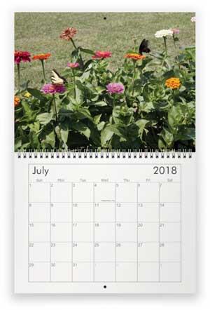 July, 2018