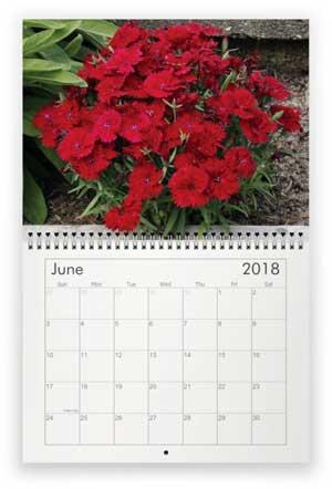 June, 2018