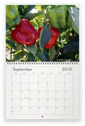 September, 2018