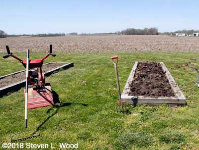 """Narrow bed """"forked,"""" but yet tilled"""