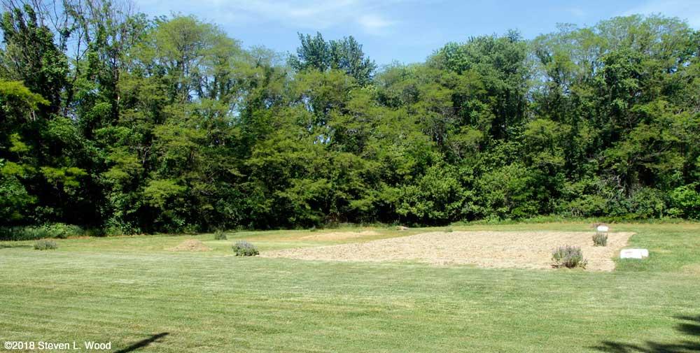 East Garden plot tilled