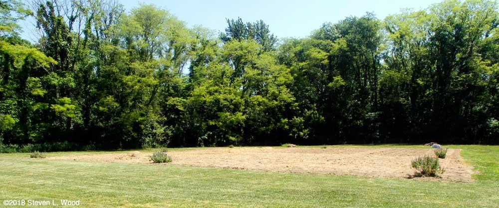 East Garden plot tilled (again)