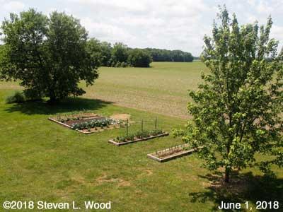 Our Senior Garden - June 1, 2018