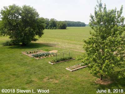 Our Senior Garden - June 8, 2018
