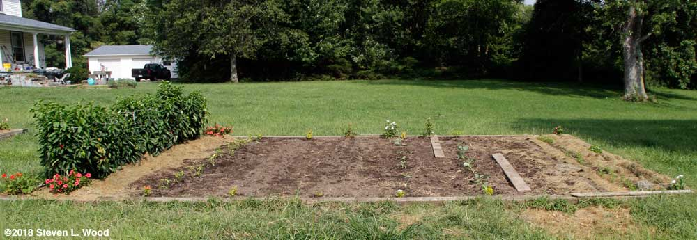 Main raised bed, cleaned up and mostly planted