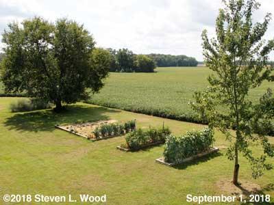 Our Senior Garden - September 1, 2018