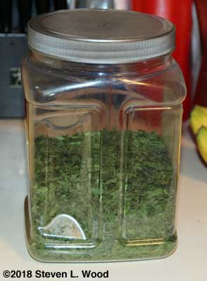 Our parsley jar...awaiting the dehydrators last load of dried parsley