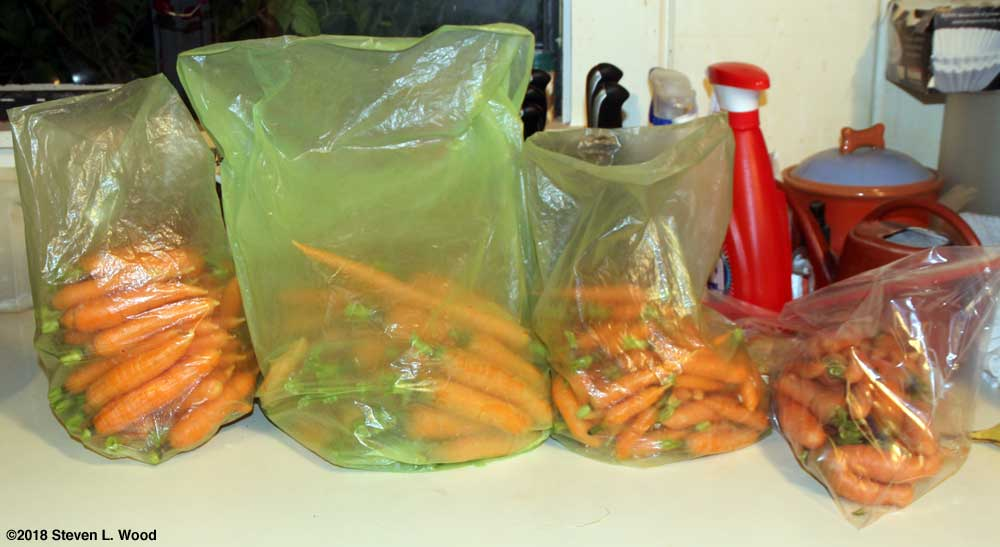 Bagged fall carrots - 2018