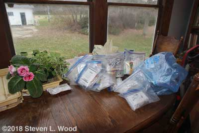 Bags of seed to be inventoried