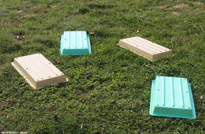 Trays drying on lawn