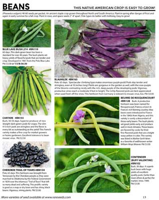 Beans from Baker Creek