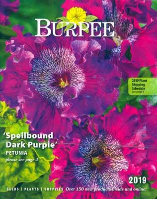 2019 Burpee catalog cover