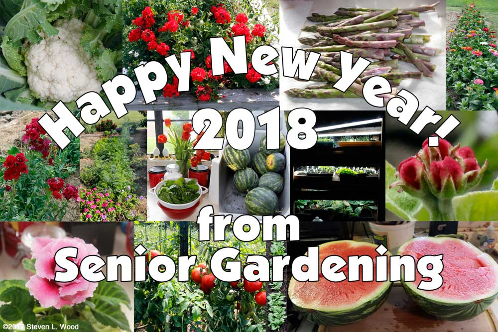Happy New Year from Senior Gardening
