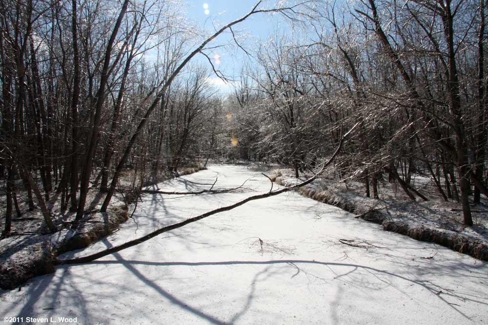 Creek on February 3, 2011