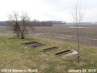 Our Senior Garden - January 24, 2019