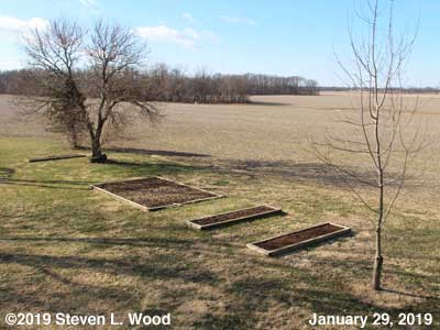 Our Senior Garden - January 29, 2019