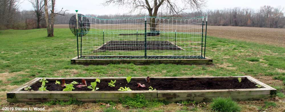 Raised beds (looking south)