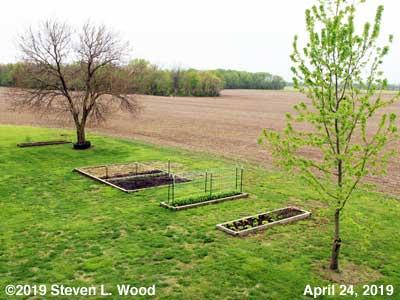 Our Senior Garden - April 24, 2019