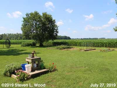 Our Senior Garden - July 27, 2019