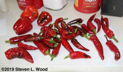 Mostly Hungarian Spice Paprika Peppers