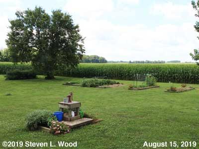 Our Senior Garden - August 15, 2019