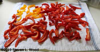 Pepper strips drying before freezing
