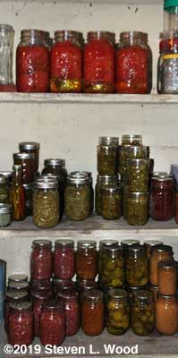 Part of downstairs pantry