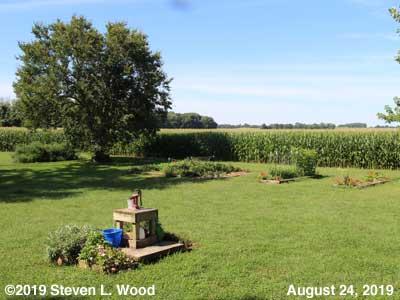 Our Senior Garden - August 24, 2019