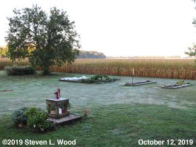 Our Senior Garden - October 12, 2019