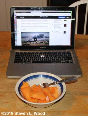 Sugar Cube cantaloupe and the news for breakfast