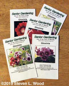 Gloxinia seed packets