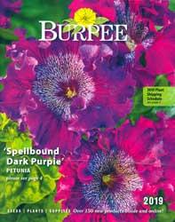 Burpee Seed Company