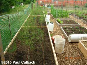Paul Calback's raised beds