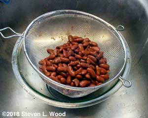 Rinsing and draining beans