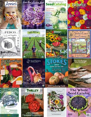 Seed Catalogs - 2020
